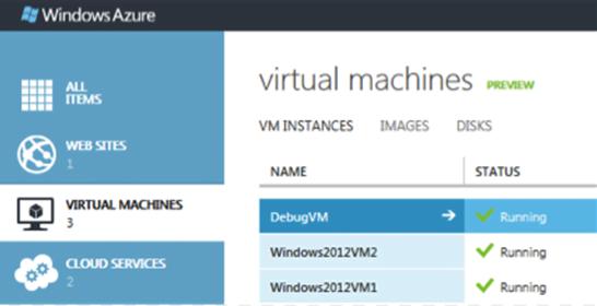 Microsoft Virtual Machine