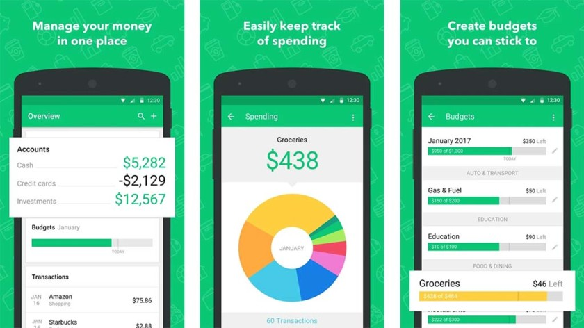 The Mint app
