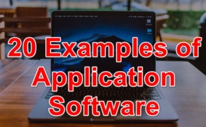 20 Examples of Application Software