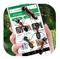 Ants on Screen Prank App: Funny Animated GIF
