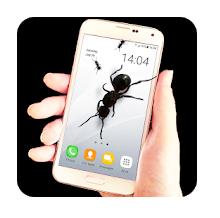 Ant on screen apps-Ants on Screen Prank App