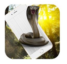 Cobra Snake Attack on Phone Prank