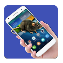 Mice Running in Phone