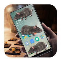 Mouse in Phone Prank (Android) App