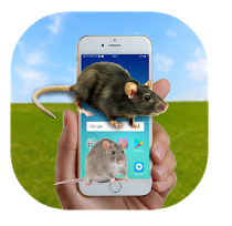 Mouse on Screen App