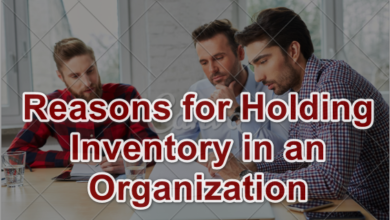 Reasons for Holding Inventory in an Organization