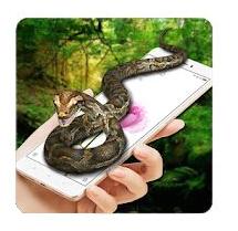 Snake Screen Prank