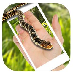 Snake on screen Apps-Snake on screen scary