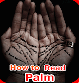 Palm Reader Apps-How to Read Palms