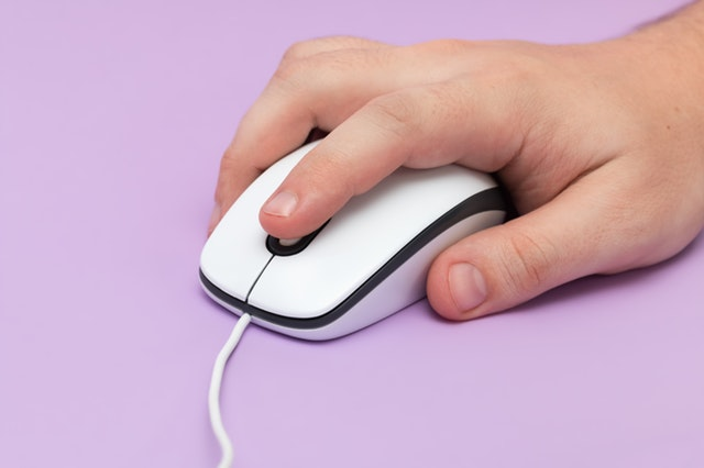 Input Devices - Computer Mouse
